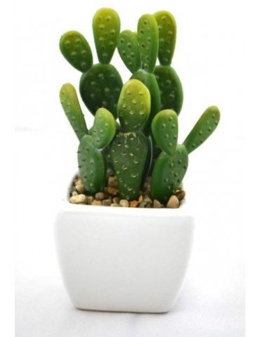 cactus white planter