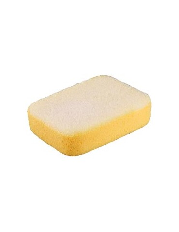 Sponges XLG